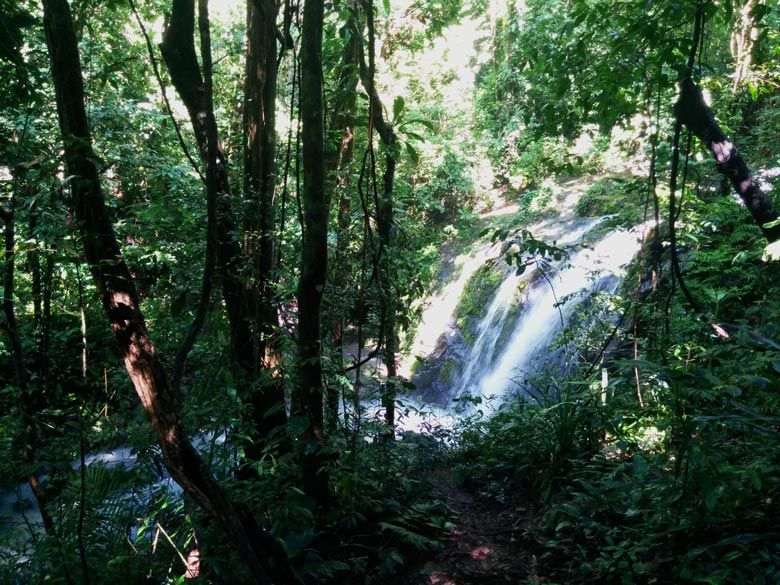 The complete guide to hiking Manuel Antonio National Park - waterfall